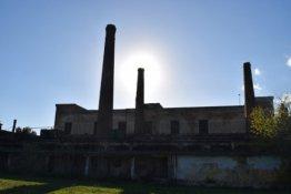 Δανάη Κολιού, Στρατιωτικό Αροποιείο στο Γουδί
