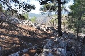 Δυτική γωνία πάνω από Ρέμα Ελίντας και Ρέμα Κλωξιάς