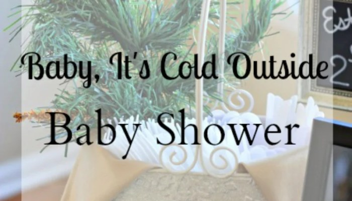 Baby It's Cold Outside Baby Shower Theme!