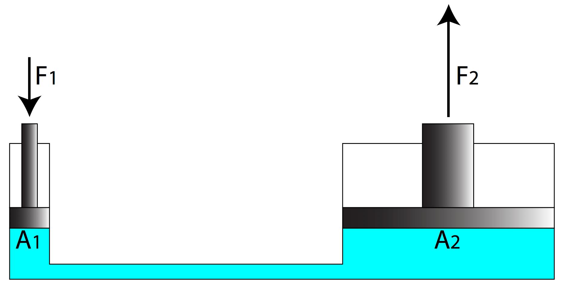 Worksheet On Finding Density
