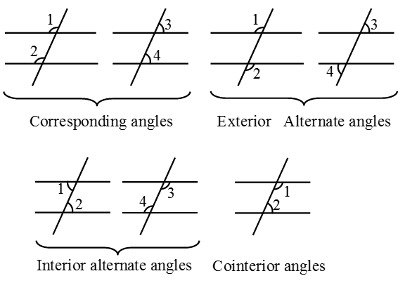 What Are Parallel Lines And Transversals A Plus Topper