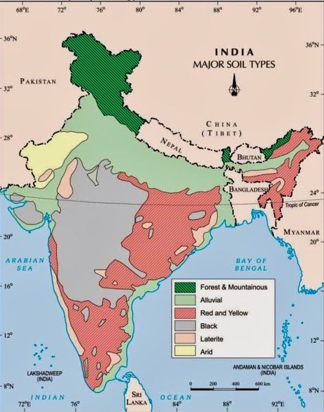Soils in india icse solutions for class 10 geography a plus topper soils in india icse solutions for class 10 geography thecheapjerseys Images