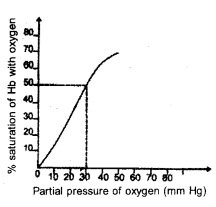 HSSLiVE Plus One Zoology Chapter Wise Previous Questions Chapter 6 Breathing and Exchange of Gases 3