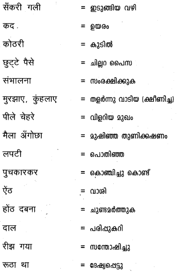 Plus One Hindi Textbook Answers Unit 3 Chapter 12 दुःख 29