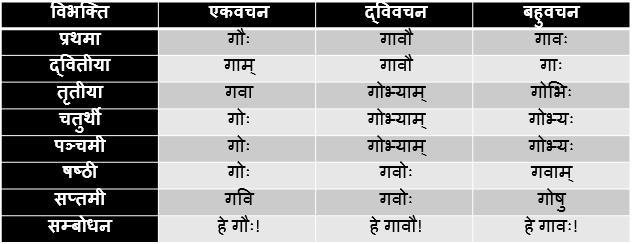 Go/Gau Shabd Roop In Sanskrit