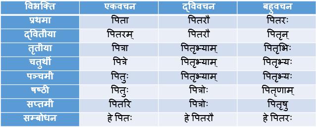 Pitr Shabd Roop In Sanskrit