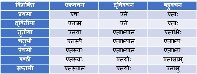 Etad/Etat Striling Shabd Roop In Sanskrit
