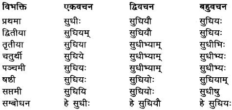 Sudhi Shabd Roop In Sanskrit