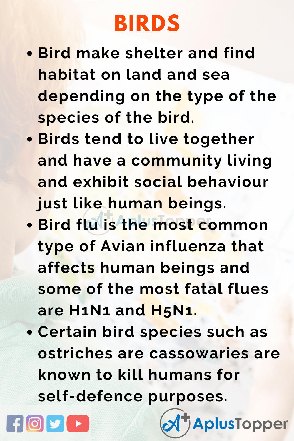 10 Lines about Birds