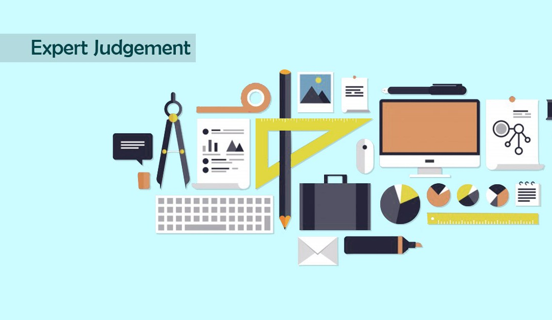 A Tool Everyone In Project Management Should Be Using – Expert Judgement