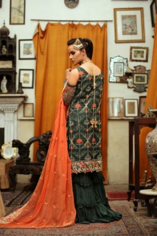 Majestic Luxury Chiffon Collection by Embroyal 2019 – 05 Opulent Green