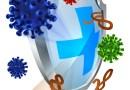Zink – unerlässlich für ein starkes Immunsystem