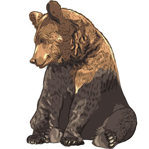 Braunbär. Indianer-Horoskop im August