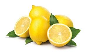 Ganze und aufgeschnittene Zitronen auf weißem Hintergrund. Husten stillen