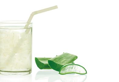Aloe vera: Ein traditionsreiches Allroundtalent