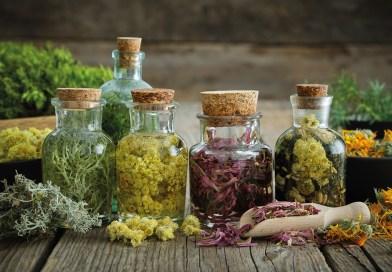 Tinkturen und Essenzen: Im Mittelpunkt eines jeden Lebens steht die Gesundheit