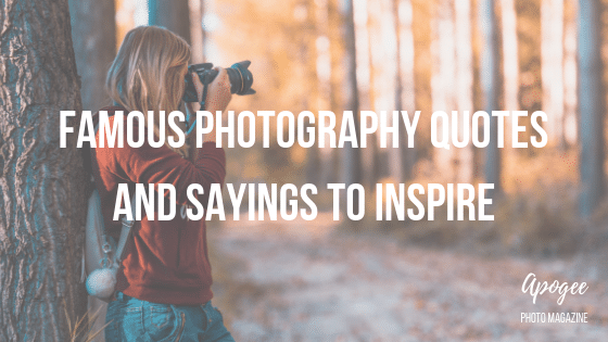 Famous Photography Quotes And Sayings To Inspire | Apogee ...