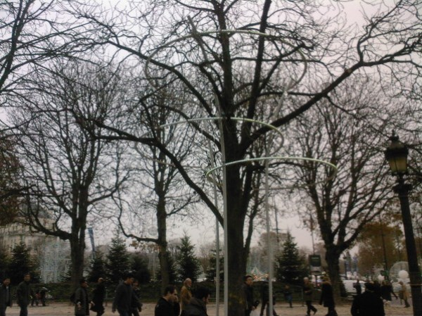arbre-champs-elysees.jpg