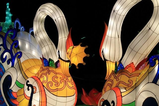 festival des lanternes gaillac cygnes