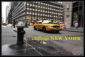 Challenge New-York en Littérature