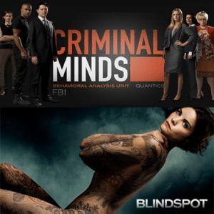 esprits criminels blindspot