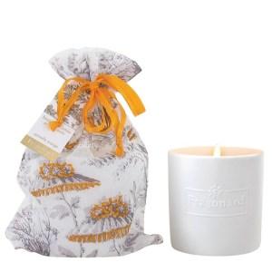 bougie cannelle orange fragonard