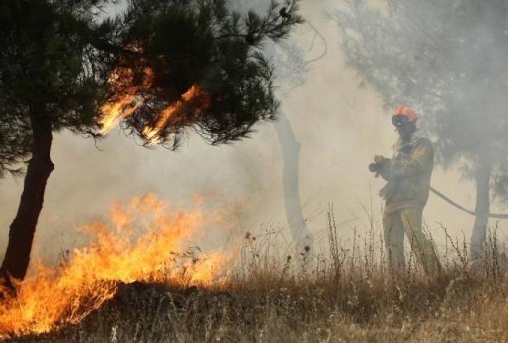 Φωτιά σε αγροτική τοποθεσία κοντά στη Βαγιωνιά