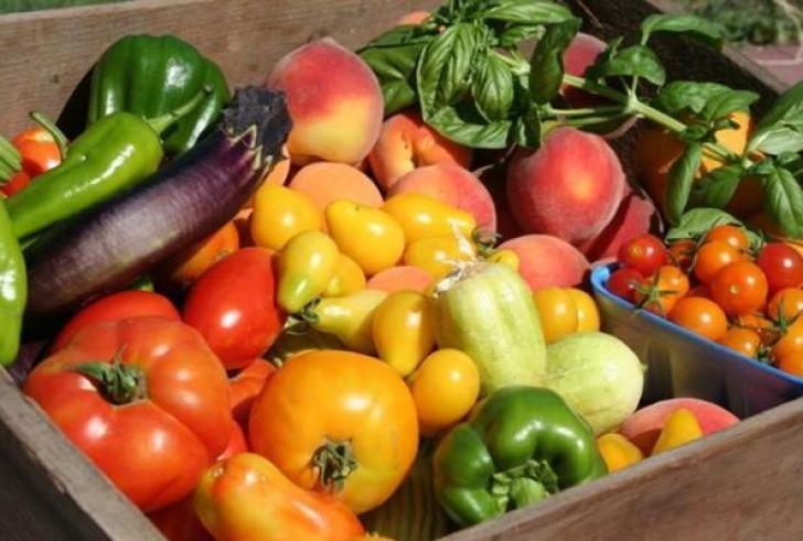 Έως και 30% μπορεί να μειωθεί η παραγωγή λαχανικών στην Ελλάδα λόγω κλιματικής αλλαγής!