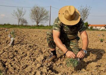 Μέχρι τις 12 Μαΐου η ένταξη των αγροτών στο κανονικό καθεστώς ΦΠΑ