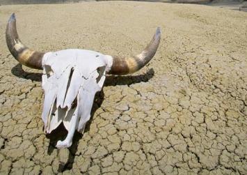 Παγκόσμιο ρεκόρ ζέστης στην Κοιλάδα του Θανάτου