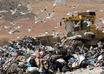 Κρήτη: «Καμπανάκι» ειδικών για την ανεξέλεγκτη καύση πλαστικών και απορριμμάτων