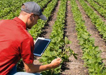 Μόνο με αύξηση ηλεκτρονικών συναλλαγών η διατήρηση του αφορολογήτου των αγροτών