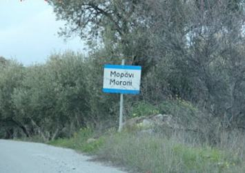Γέμισε φόλες και νεκρά ζώα το Μορόνι