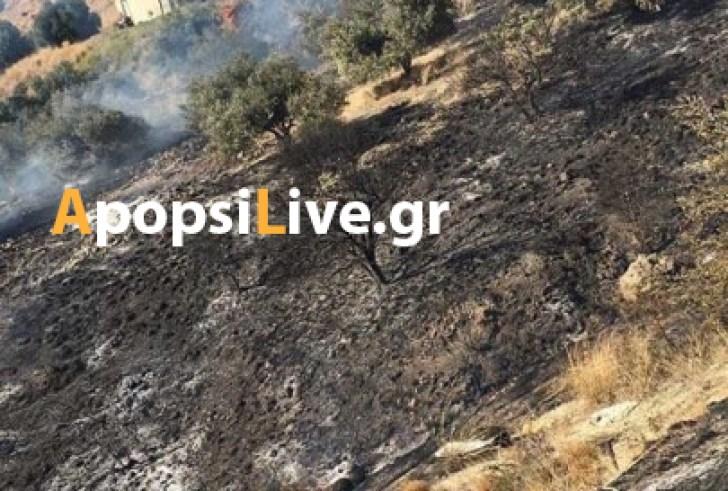 20 στρέμματα γης έγιναν… στάχτη στο Δήμο Γόρτυνας – Συνελήφθη 72χρονος