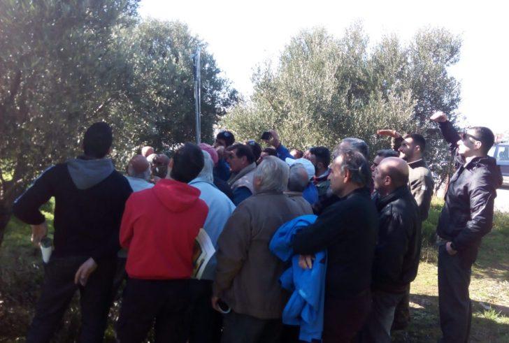 Με επιτυχία η εκπαιδευτική συνάντηση για την ελιά από τον Αγροτικό Συνεταιρισμό Τυμπακίου (φώτο)