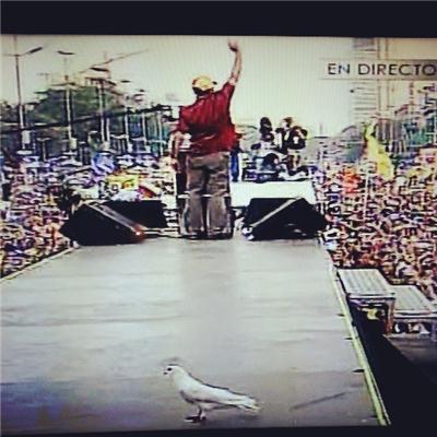 La paloma de Capriles está atrás... y en el piso