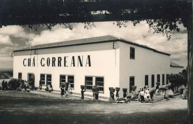 Gorreana tea