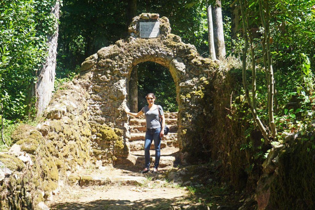 Découvrez les forêts de Buçaco
