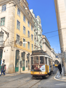 Scenic tram