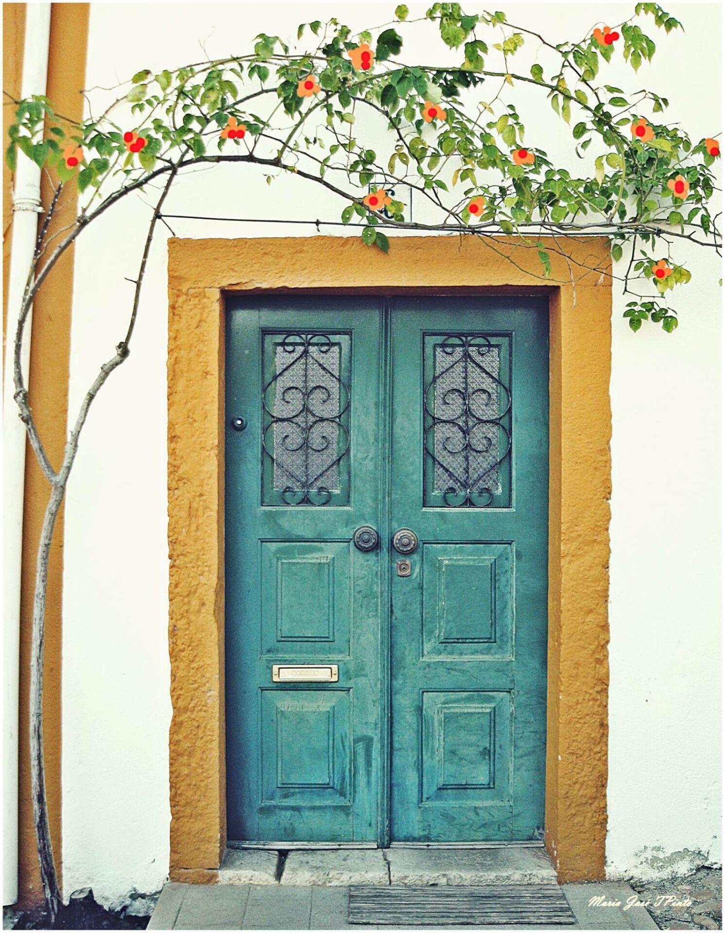 Portuguese door 4