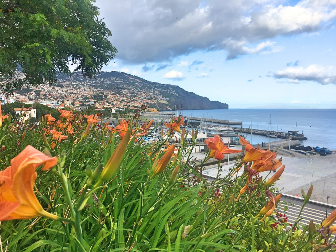 Flowers and Funchal
