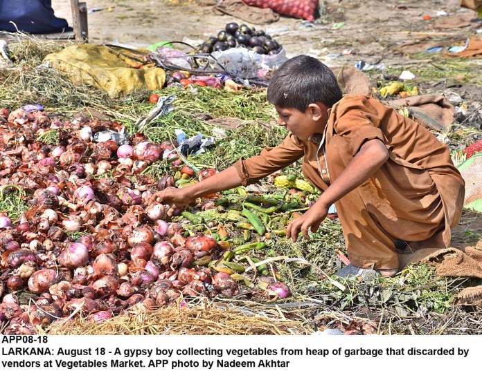LARKANA: August 18 - A gypsy boy collecting vegetables from heap of garbage that discarded by vendors at Vegetables Market. APP photo by Nadeem Akhtar