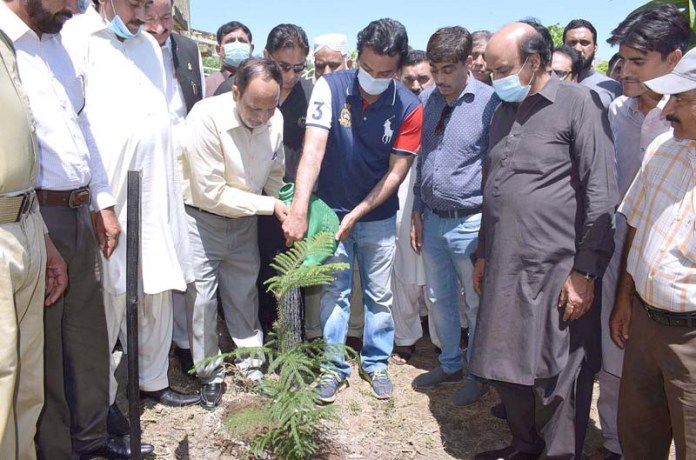SIALKOT: August 22 – Special Assistant to PM on Youth Affairs Usman Dar planting tree at Govt Jinnah Islamia College. APP photo by Muhammad Munir Butt