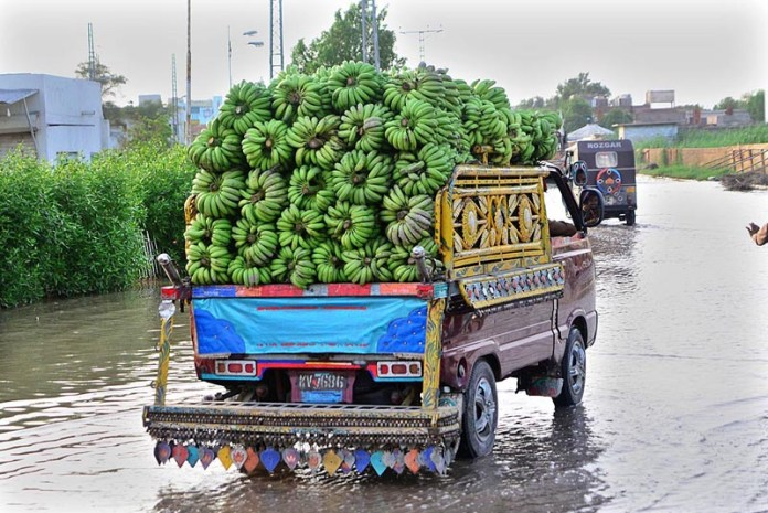 HYDERABAD: September 02 – A vehicle on the way loaded with bananas to be delivered at Fruits Market. APP photo by Farhan Khan