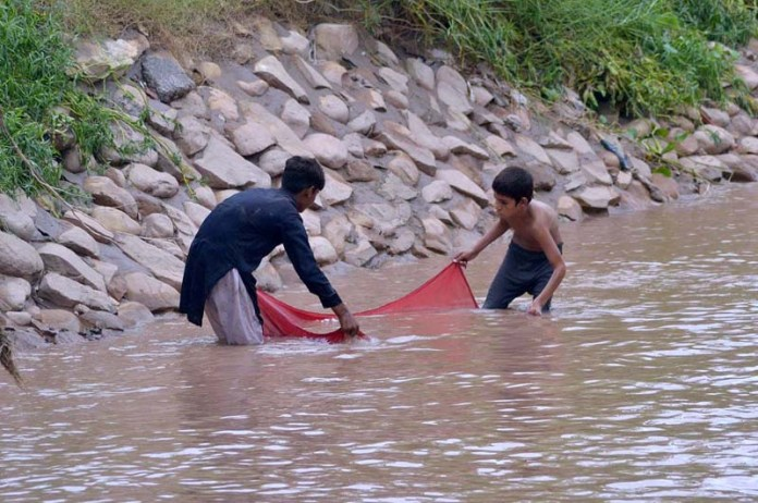 MULTAN: September 05 - Youngsters catching fishes in a traditional way in Sikandari Nala. APP Photo by Safdar Abbas