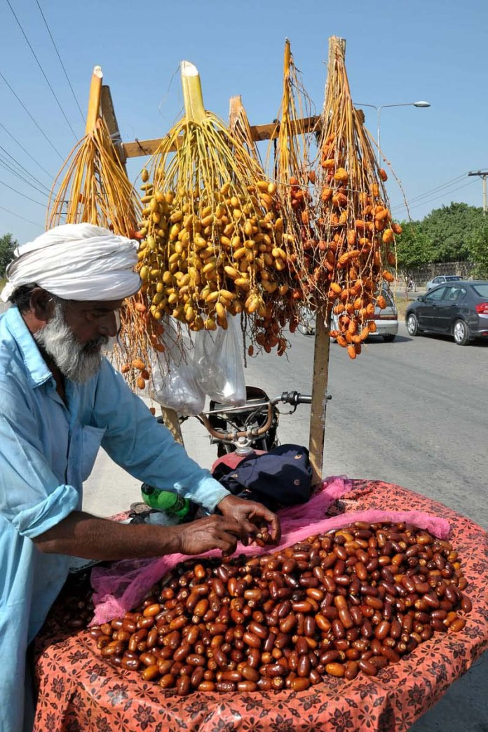 ISLAMABAD: October 04 – A vendor displaying and arranging fresh dates to attract the customers at his roadside setup. APP photo by Saeed-ul-Mulk