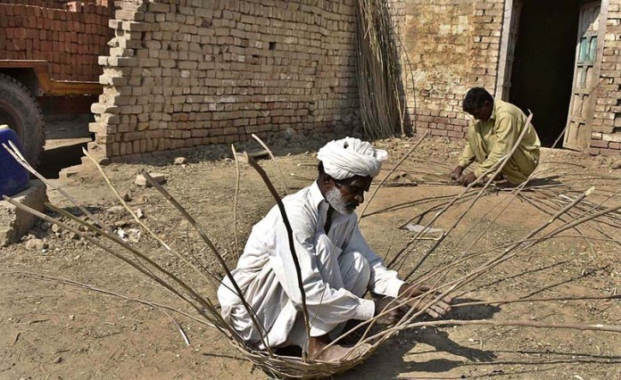 FAISALABAD: November 04 – Workers busy in making traditional baskets with tree branches. APP photo by Muhammad Waseem