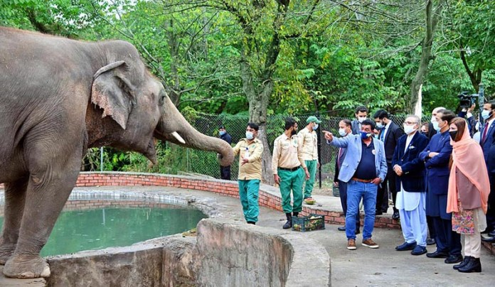 Kaavan's retirement to Cambodia, a consideration for feelings of animals: President