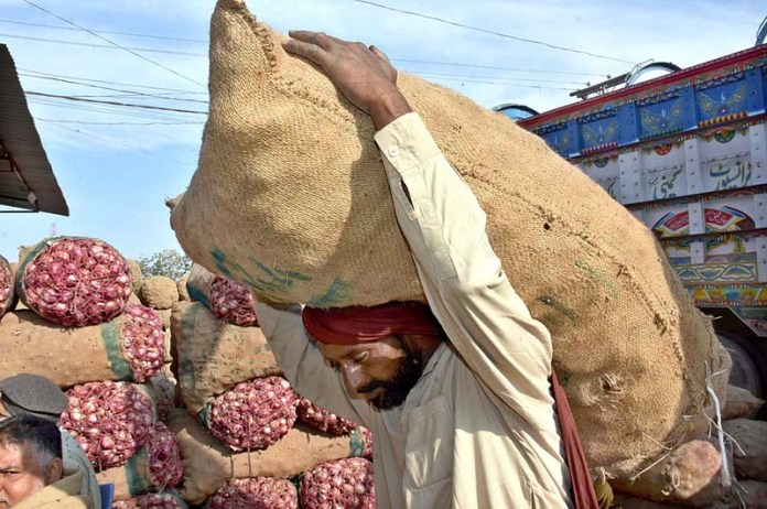 A labourer unloading onions filled bags from delivery truck at Vegetable Market