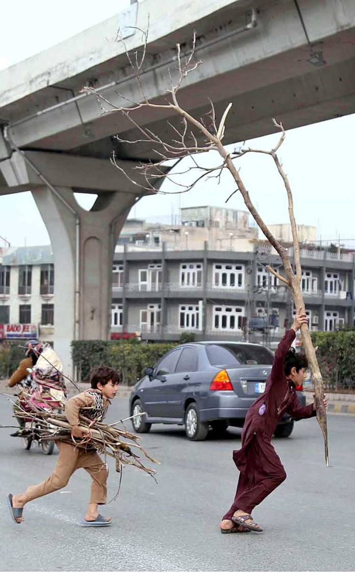 Youngsters crossing the busy road while holding tree branches to be used as fuel for cooking at Moti Mahal